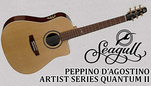 Seagull Peppino D'Agostino